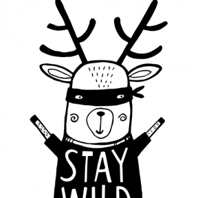 stay-wild-.png